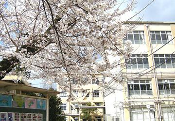 京都市立蜂ヶ岡中学校 徒歩9分