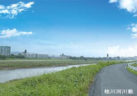 桂川河川敷