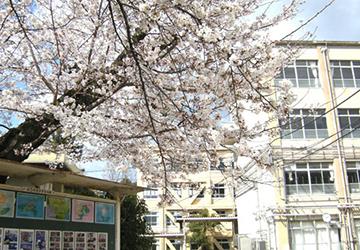 京都市立蜂ヶ岡中学校 徒歩8分